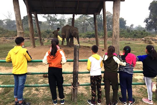 Ausflug zum Chitwan Nationalpark